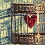 Jaula con corazón