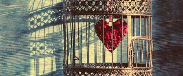 La epidemia del amor inmaduro